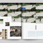 the-road-less-traveled-transworld-skate3